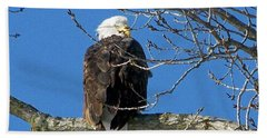 Eagle Watch Bath Towel by Sue Stefanowicz