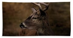 Hand Towel featuring the photograph Early Buck by Robert Frederick