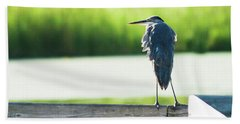Early Morning Great Blue Heron Bath Towel