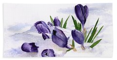 Early Spring In Montana Hand Towel