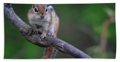 Bath Towel featuring the photograph Eastern Chipmunk by Gary Hall