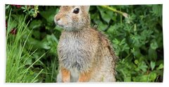 Eastern Cottontail Bath Towel