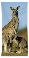 Eastern Grey Kangaroo And Her Joey Hand Towel