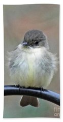 Eastern Phoebe 4 Bath Towel