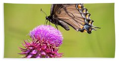 Hand Towel featuring the photograph Eastern Tiger Swallowtail Dark Form  by Ricky L Jones