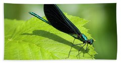 Hand Towel featuring the photograph Ebony Jewelwing by Ricky L Jones