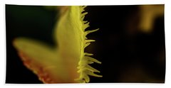 Bath Towel featuring the photograph Edge Of The Tulip by Jay Stockhaus