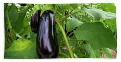 Eggplant In A Greenhouse Bath Towel by Hans Engbers