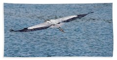 Great Blue Heron In Flight Hand Towel