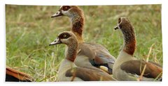 Bath Towel featuring the photograph Egyptian Geese by Betty-Anne McDonald