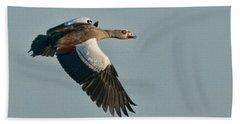 Egyptian Goose Bath Towel