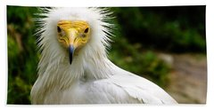 Egyptian Vulture Bath Towel