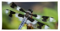 Eight-spotted Skimmer  Bath Towel by Sharon Talson