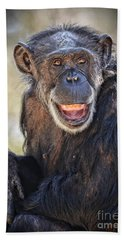 Elderly Chimp Enjoying The Warm Summer Afternoon Bath Towel by Jim Fitzpatrick