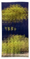 Elegance In The Park Horizontal Adventure Photography By Kaylyn Franks Hand Towel