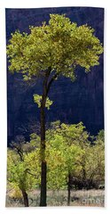 Elegance In The Park Utah Adventure Landscape Photography By Kaylyn Franks Bath Towel