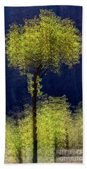 Elegance In The Park Vertical Adventure Photography By Kaylyn Franks Hand Towel