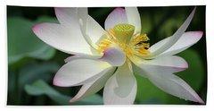 Elegant Lotus Hand Towel