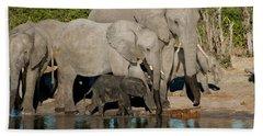 Elephant 3 Bath Towel