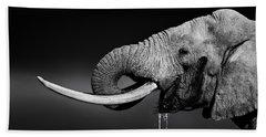 Elephant Bull Drinking Water Hand Towel
