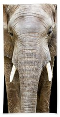 Elephant Face Closeup Looking Forward Hand Towel by Susan Schmitz