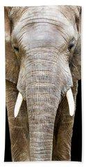Elephant Face Closeup Looking Forward Bath Towel
