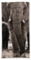 Elephant Family Time Bath Towel