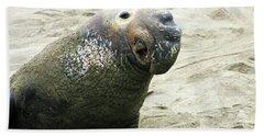 Elephant Seal Bath Towel