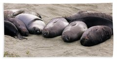 Elephant Seals Hand Towel
