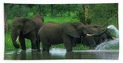 Elephant Shower Hand Towel