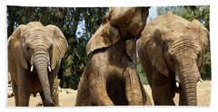 Elephants Bath Towel