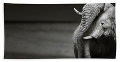 Elephants Interacting Bath Towel