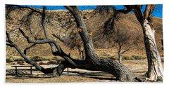 Elizabeth Lake Tree Hand Towel