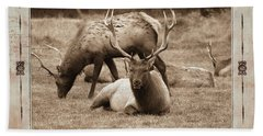 Bath Towel featuring the photograph Elk by Athala Carole Bruckner