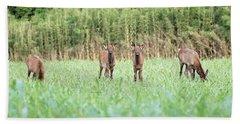 Elk Calves Bath Towel