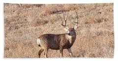 Deer  Hand Towel