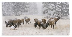 Elk In A Snow Storm - 1135 Hand Towel
