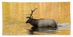 Elk In Golden River Hand Towel