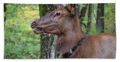 Elk In The Woods Bath Towel