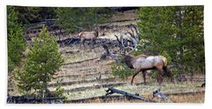 Elk In Yellowstone Bath Towel