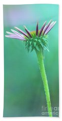 Emerging Purple Conefower Reaching For The Sky Hand Towel