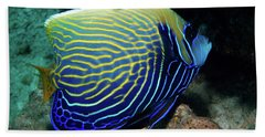 Emperor Angelfish, Red Sea 1 Bath Towel