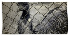 Emu At The Zoo Hand Towel