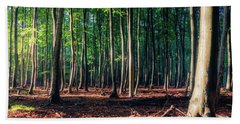 Bath Towel featuring the photograph Enchanted Forest by Dmytro Korol