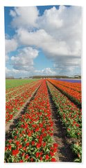 Bath Towel featuring the photograph Endless Rows Of Blooming Tulips by Hans Engbers