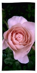 English Beauty Ambridge Rose Hand Towel by Louise Kumpf