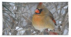 Enjoying The Snow Hand Towel by Betty-Anne McDonald