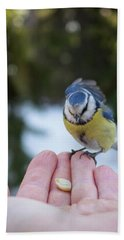 Eurasian Blue Tit Lunch Time Hand Towel