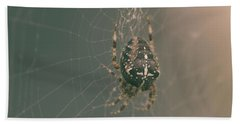 European Garden Spider B Bath Towel