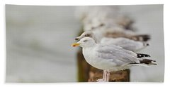 Bath Towel featuring the photograph European Herring Gulls In A Row Fading In The Background by Nick Biemans